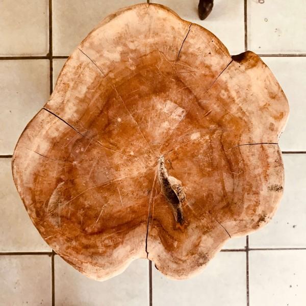 Пън - дървено трупче